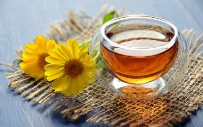 Le thé bio en bref !